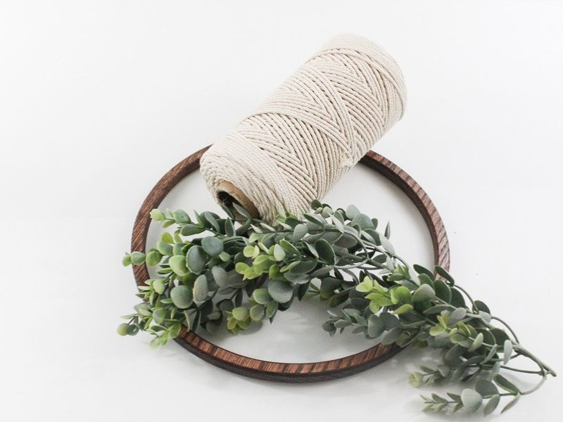 wooden hoop, faux eucalyptus, and macrame string