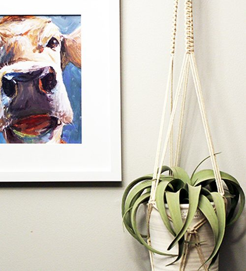 macrame plant hanger hanging next to a cow picture