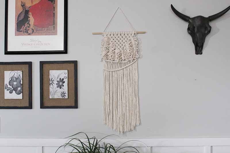 macrame wall hanging with square knots hanging with pictures and black faux steer skull
