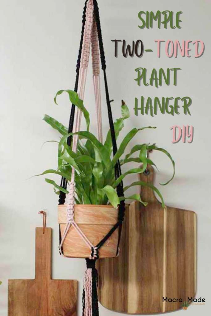 Plant in clay pot hanging in simple two-toned plant hanger