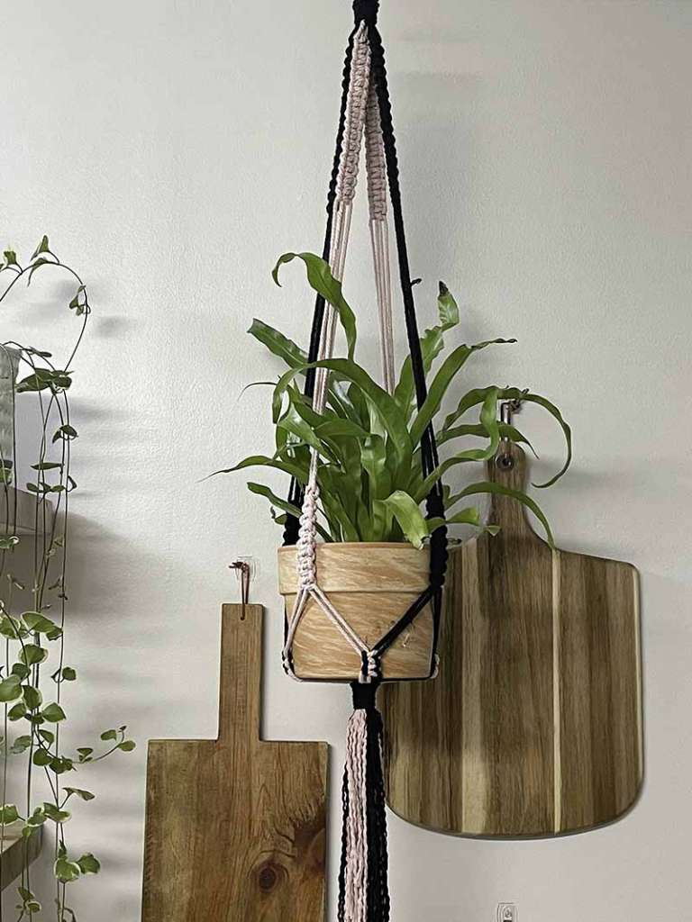 two-toned plant hanger hanging in front of cutting boards