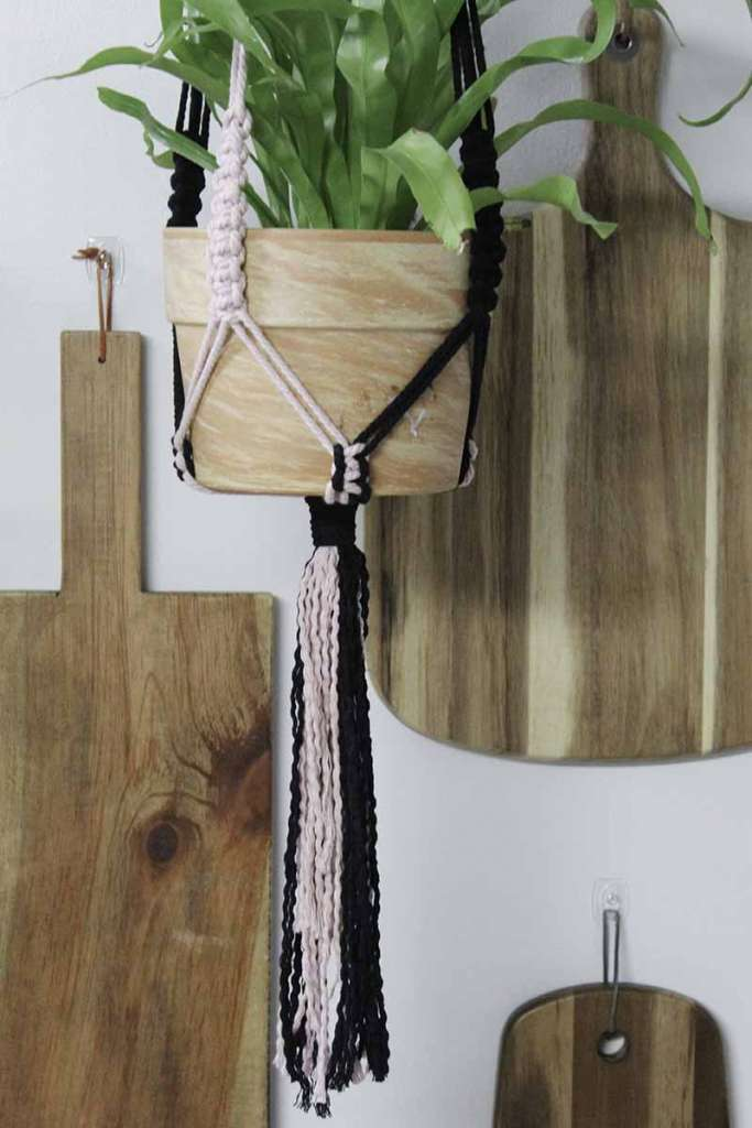 wavy tail of two-toned plant hanger